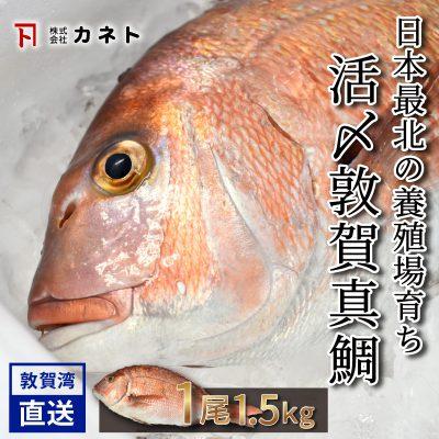 k0887014